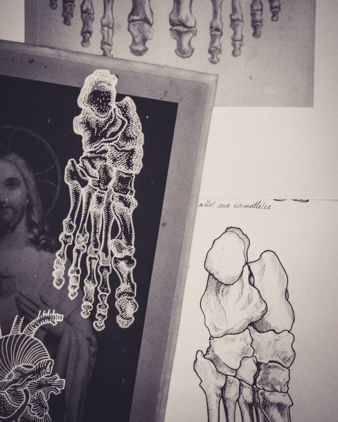 medical illustration sketches by Tiina Lilja