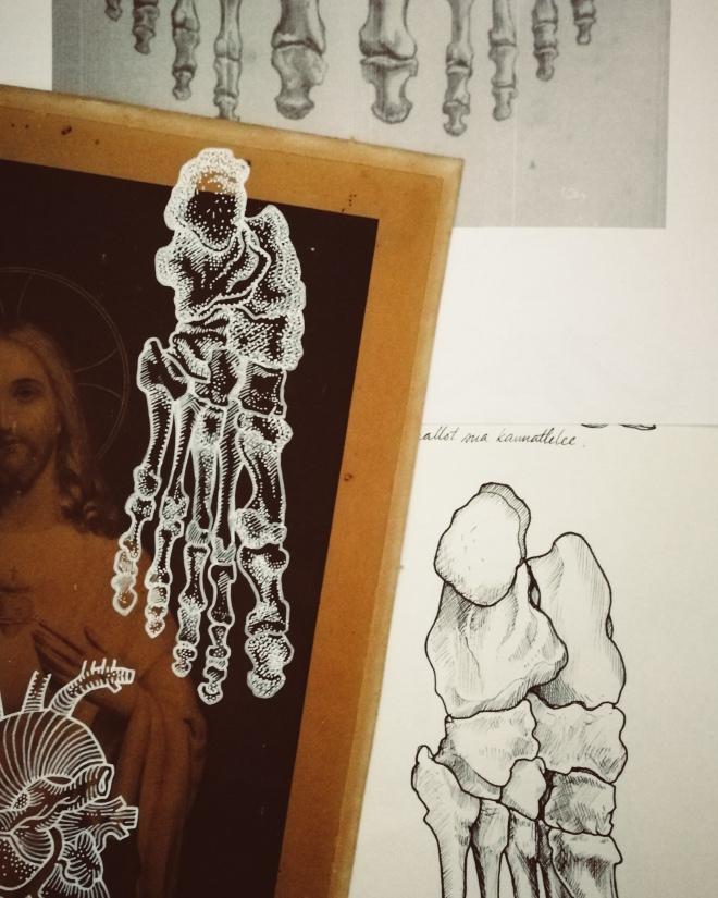 Corpus Christi by Tiina Lilja - work in progress, bones of the foot