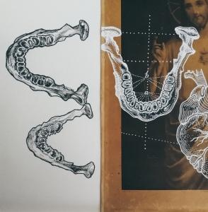 Corpus Christi by Tiina Lilja - work in progress, jaw bones