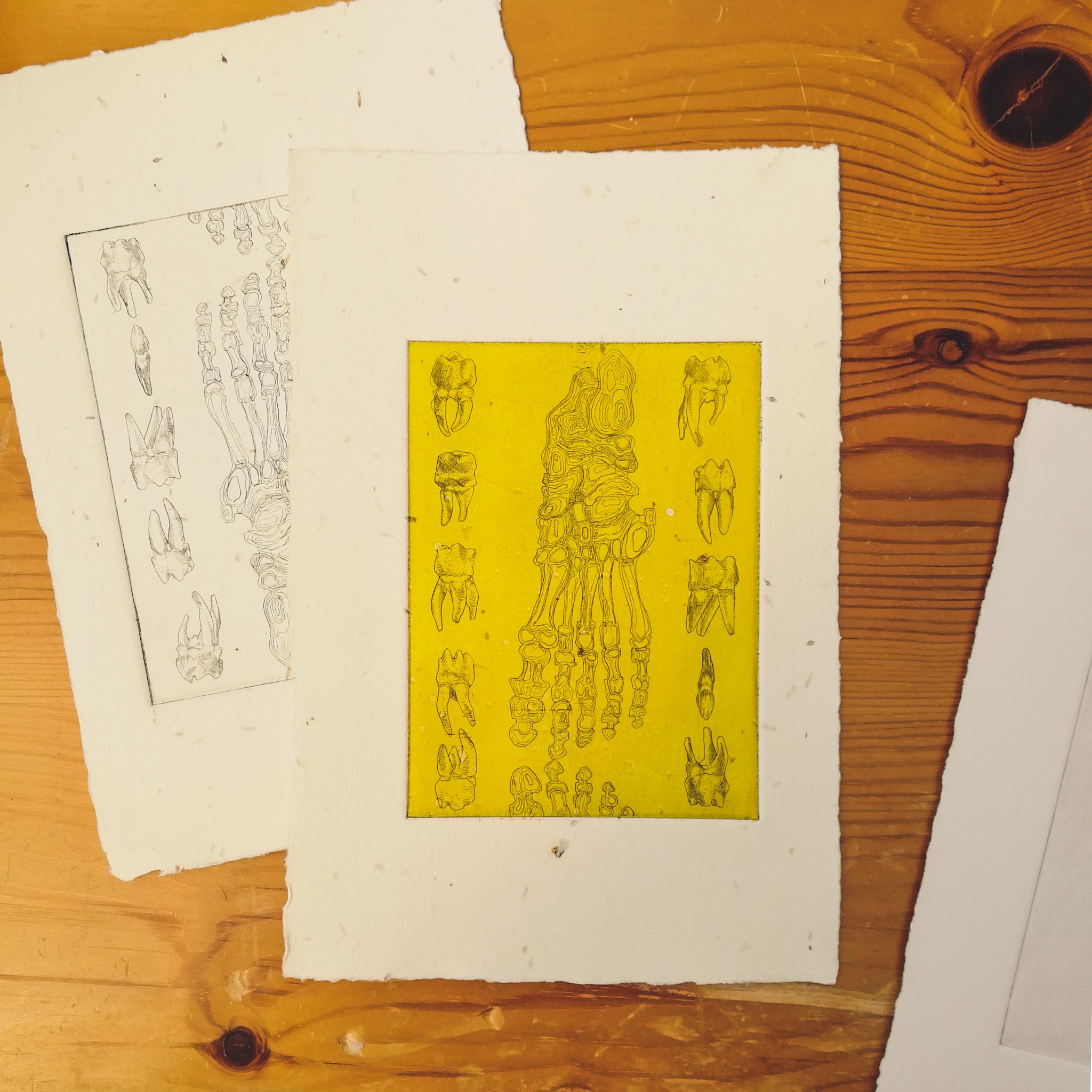 test prints by Tiina Lilja with human leg bone motifs