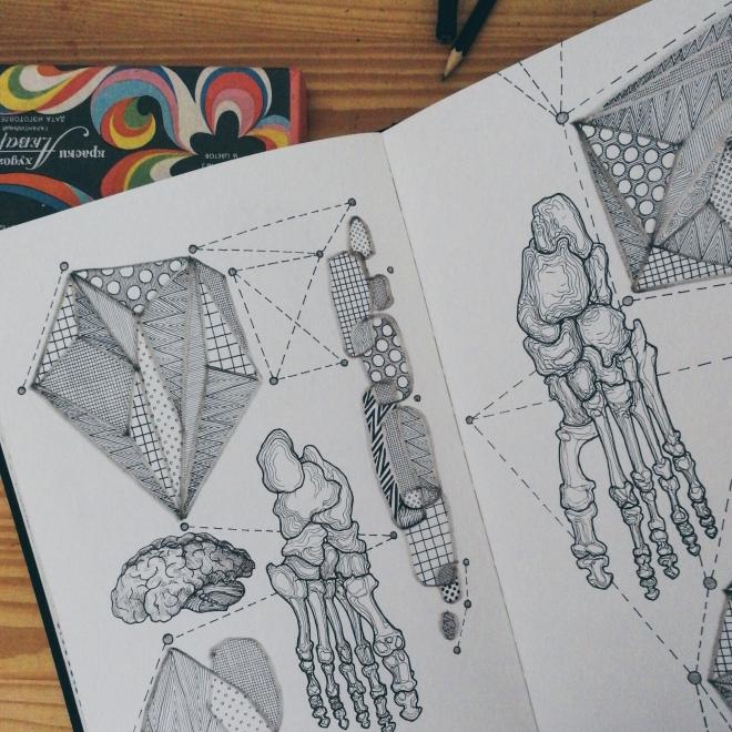 human leg bone sketch by Tiina Lilja