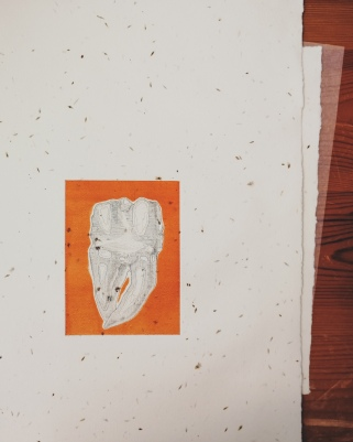 tooth etching by Tiina Lilja in black and orange