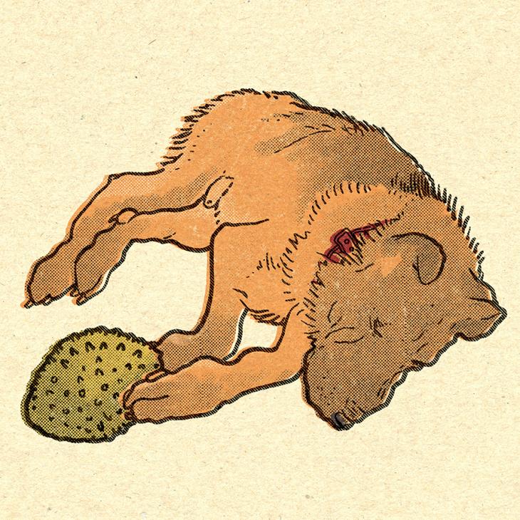 german shephard / Alsatian illustration by Tiina Lilja
